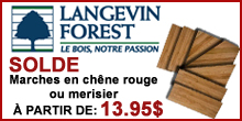 Langevin Forest - Janvier 2015