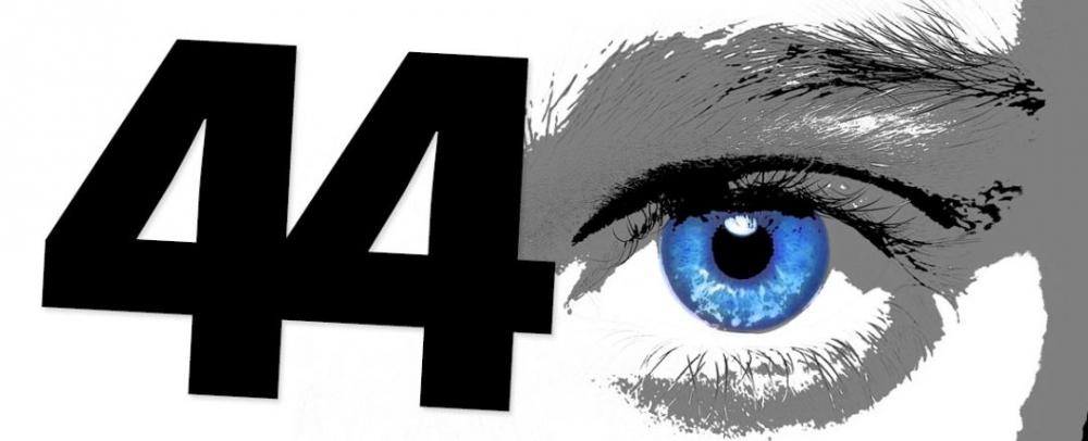 44(2).JPG