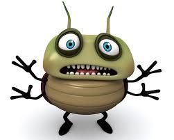 Bug3.jpeg